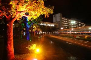 松岡キャンパス