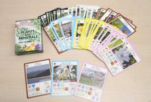 完成した「植物カード」