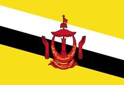 flag_burunei