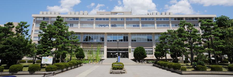 国際地域学部