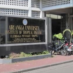 研修したアイルランガ大学